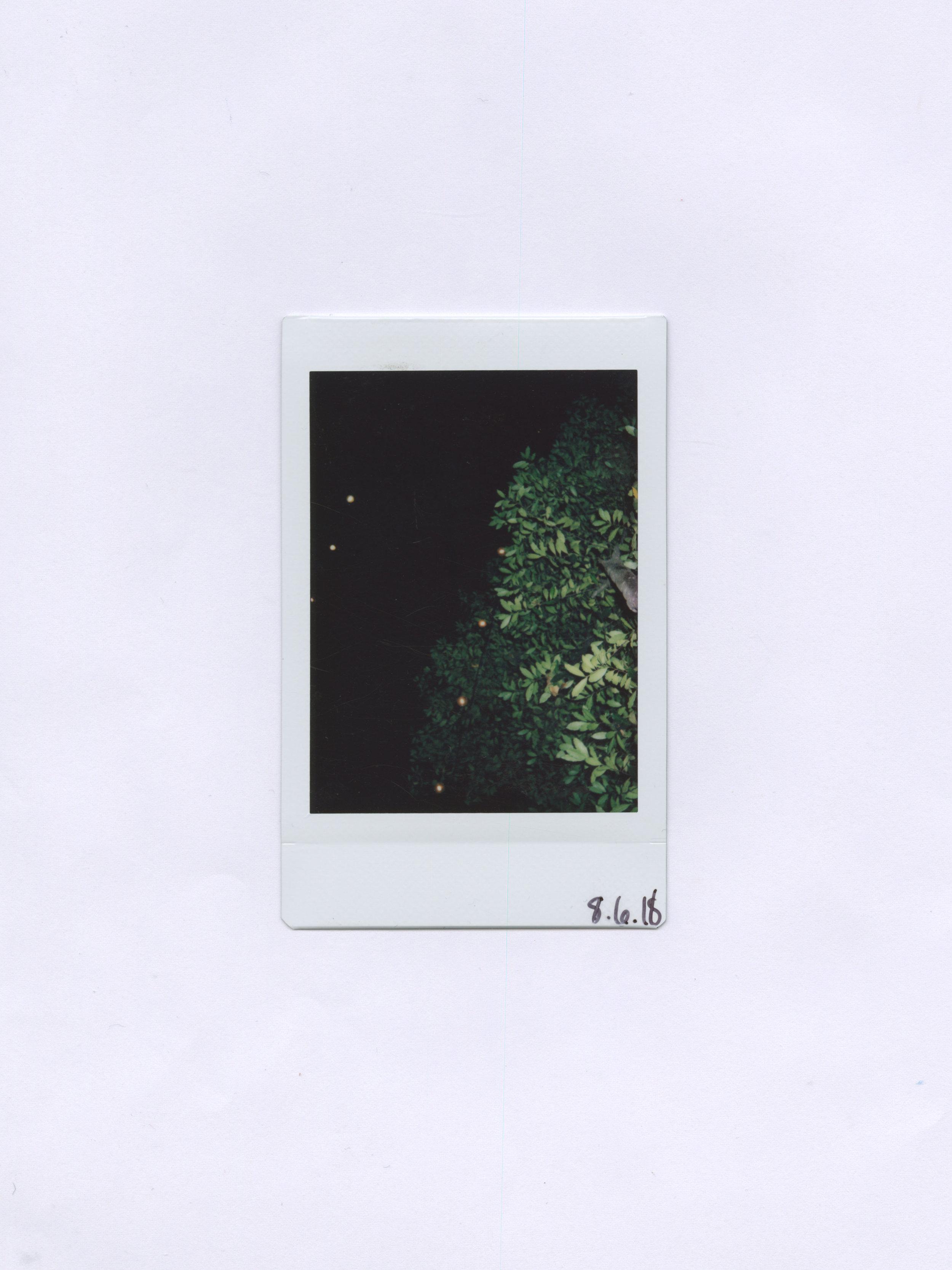 8.6.18.jpg