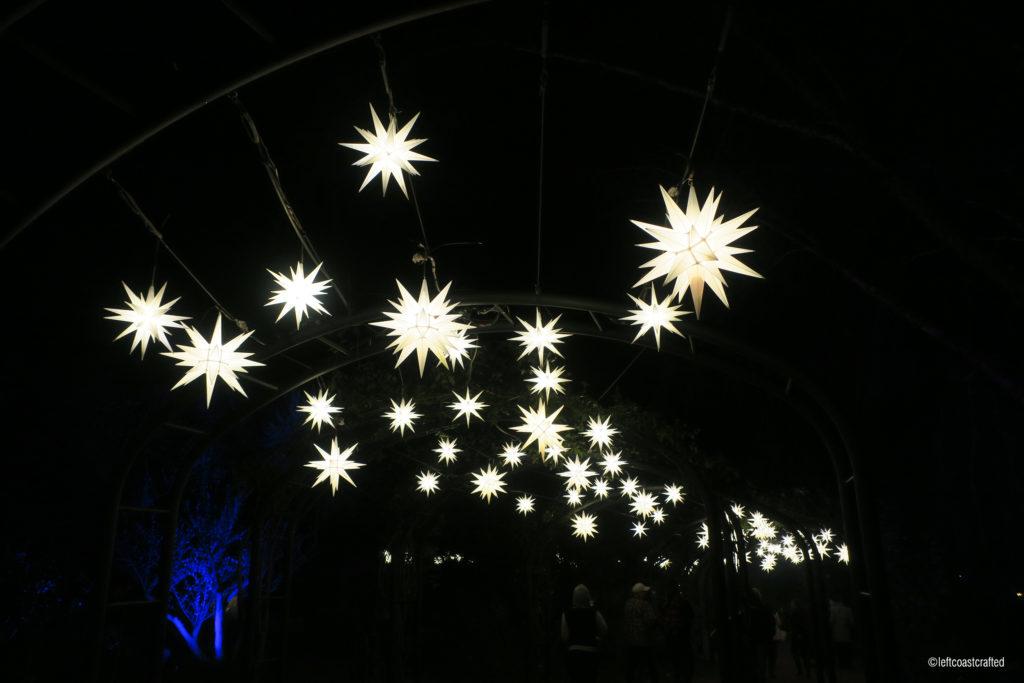 Enchanted-stars-1024x683.jpg