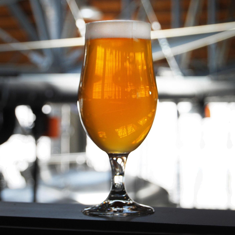 Glass of Batch One ale.