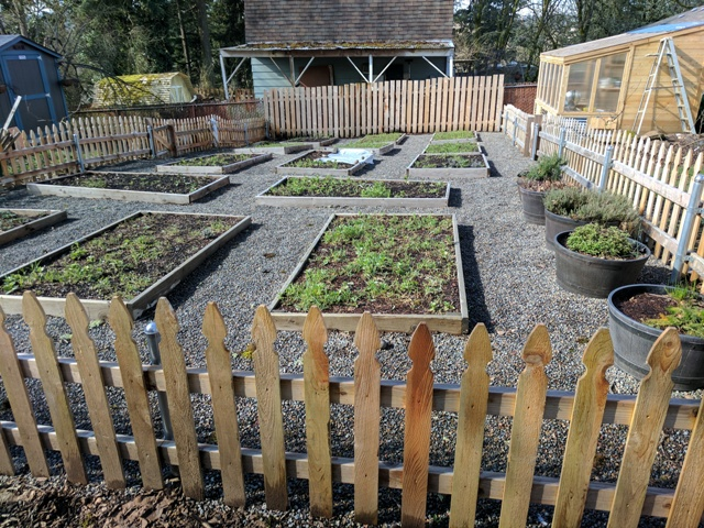 McMackin's vegetable gardens.