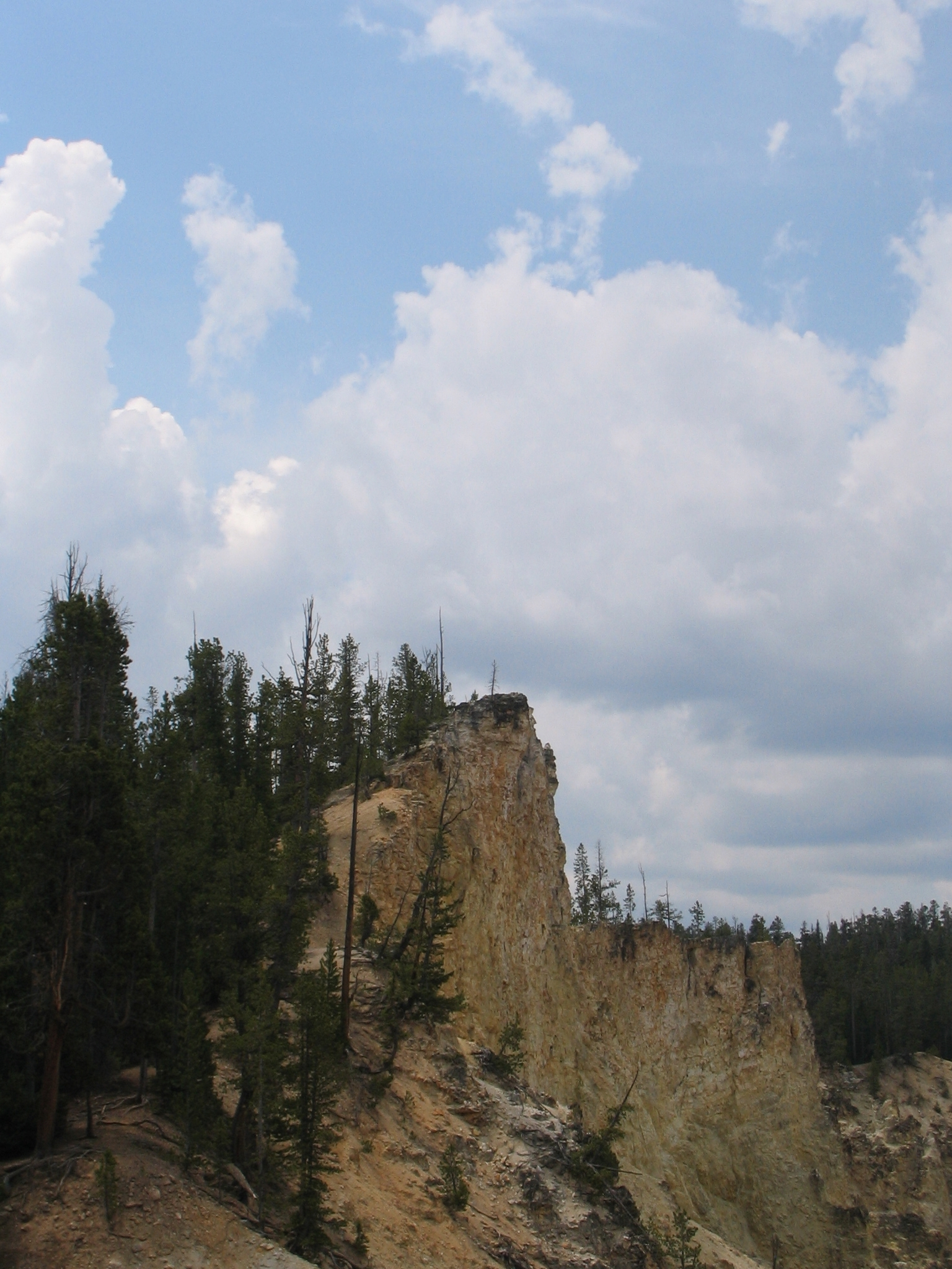 Bluff Above the Lower Falls Yellowstone National Park