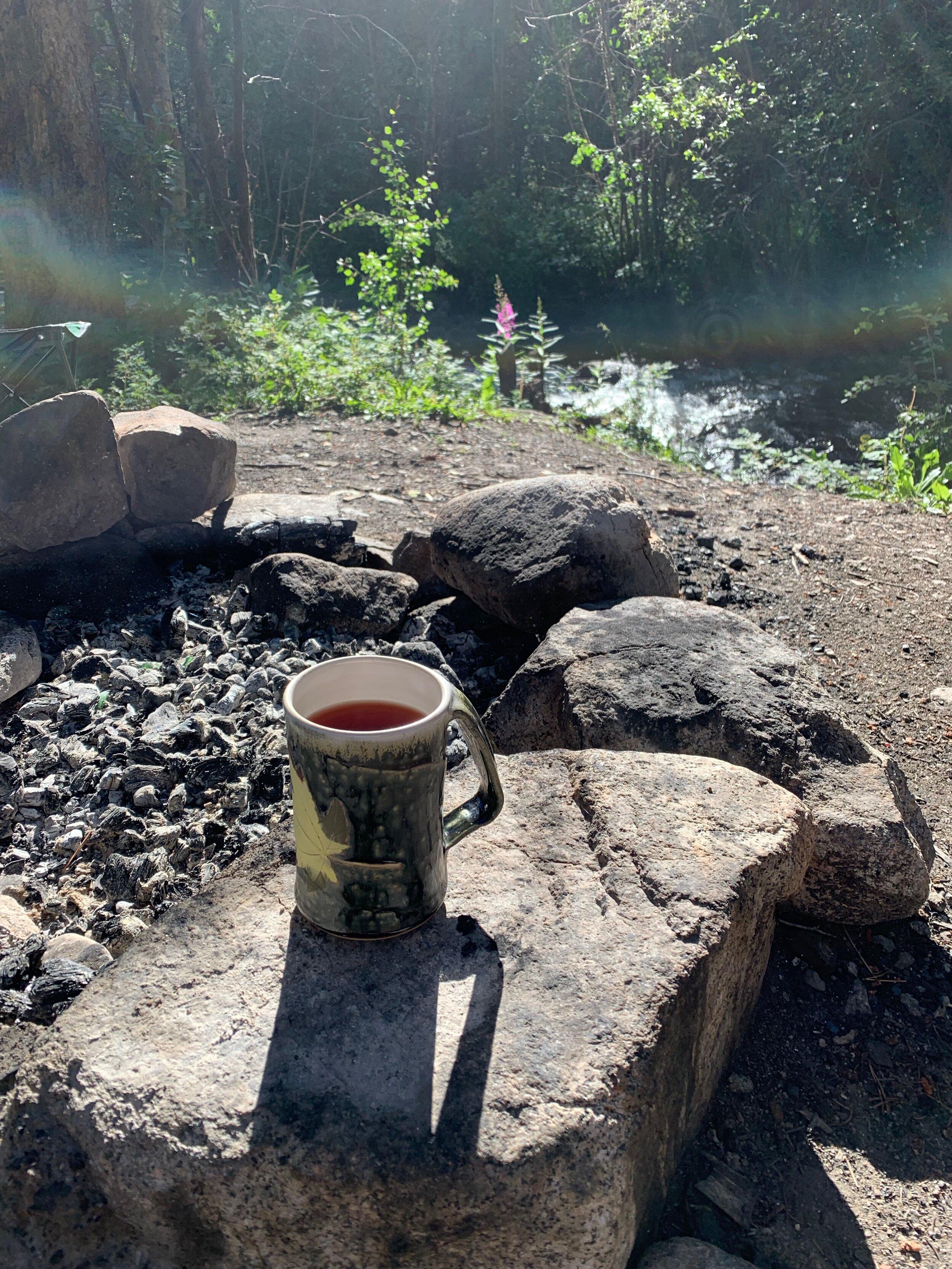 Morning tea at creekside