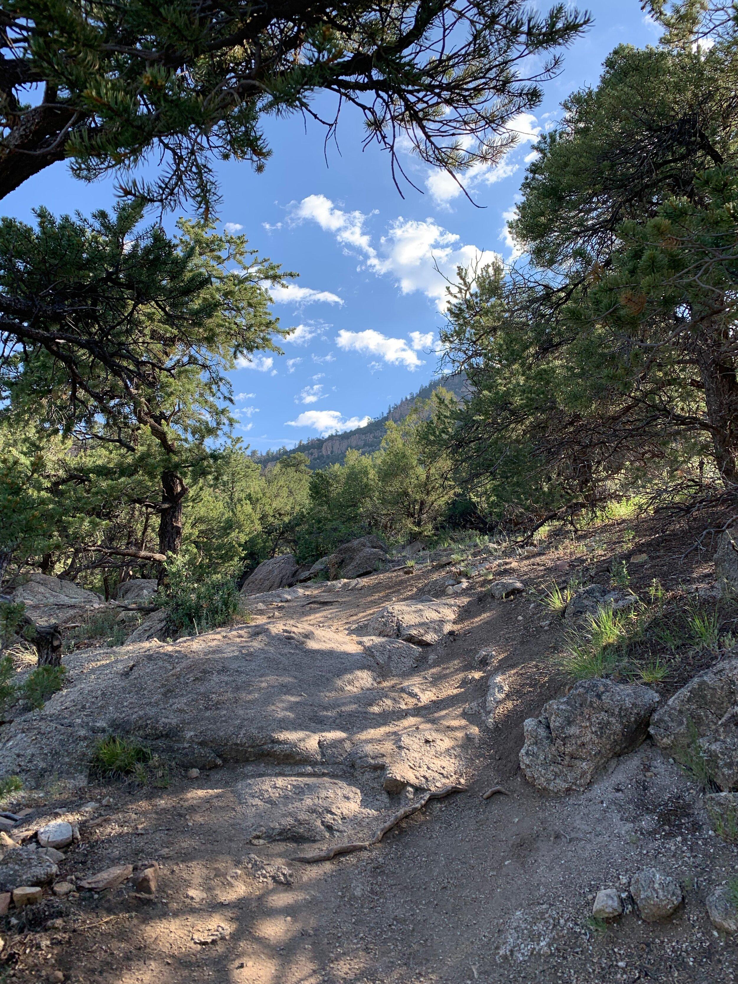 Trail5.jpeg