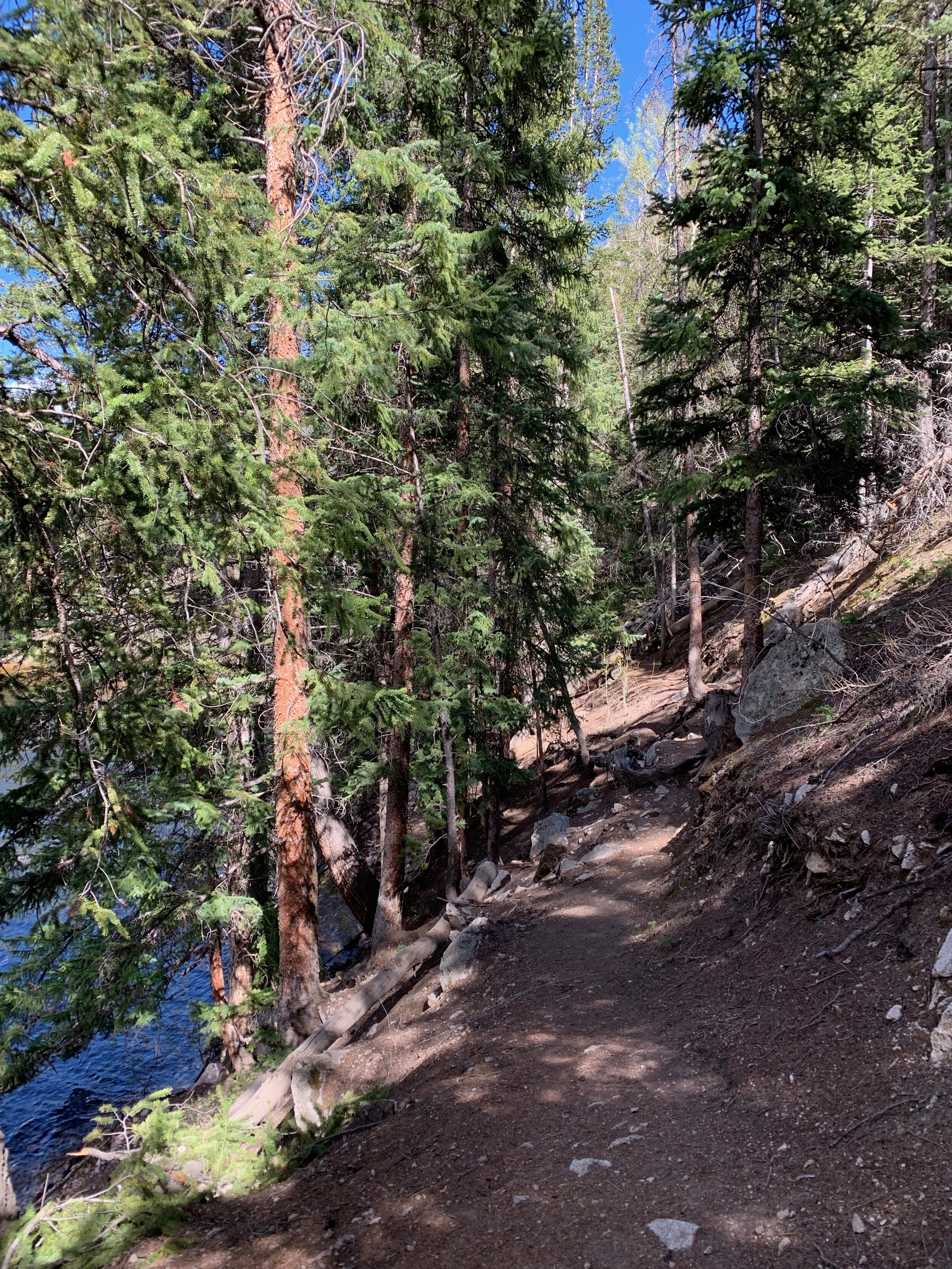 Trail4.jpeg