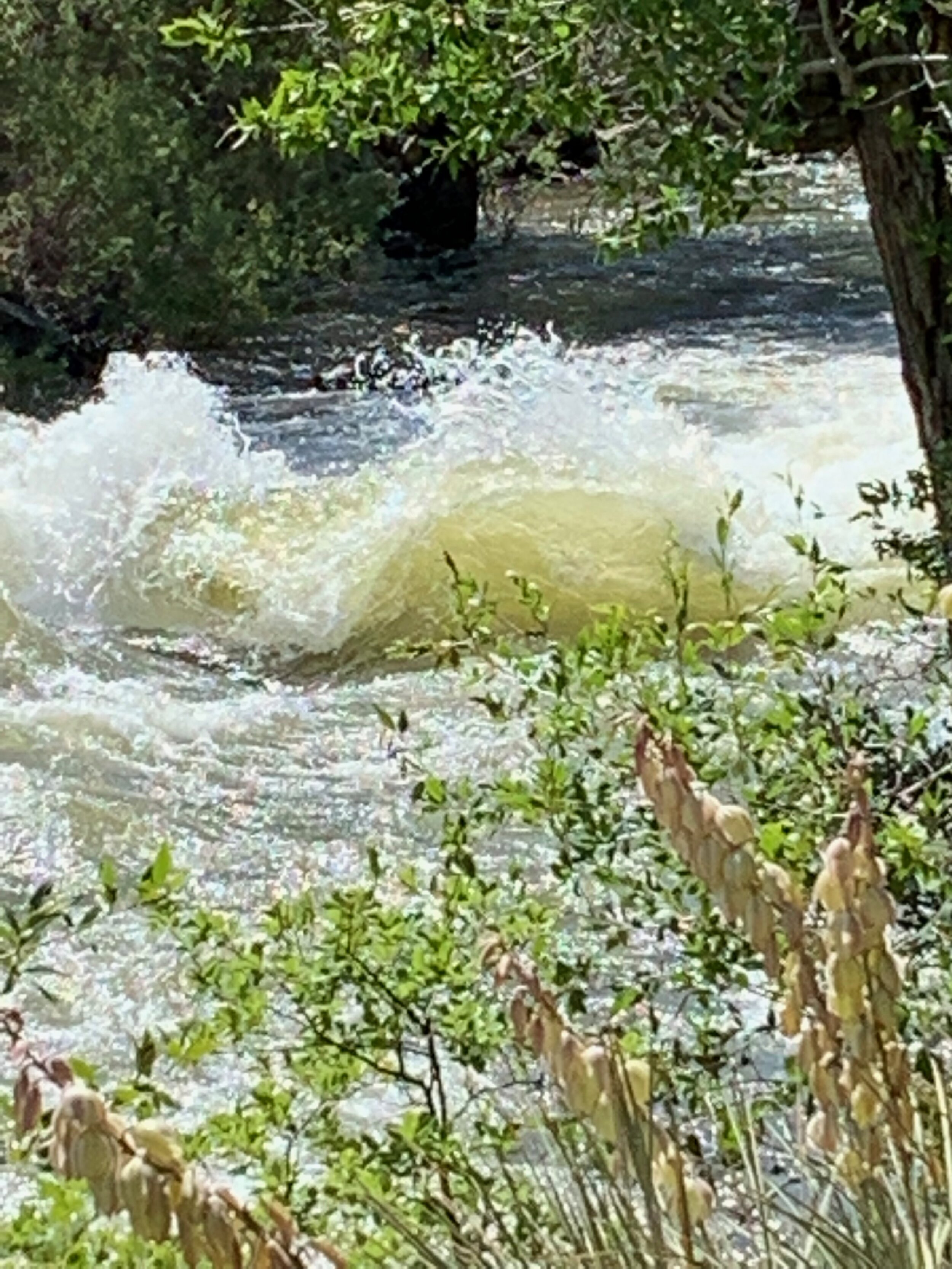Some of the renowned white-water of the Arkansas River