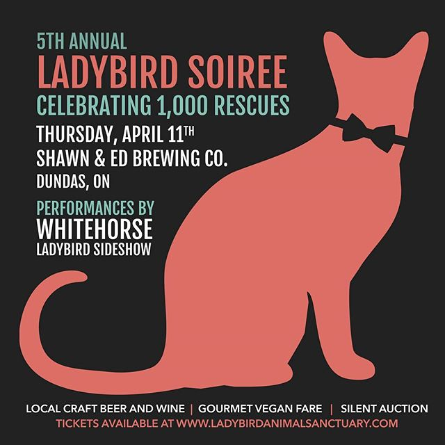 Today is the final day to buy tickets for the Ladybird Soiree happening this Thursday night.  Tickets are almost fully sold out so get them while they last, and help us help animals in need in our community!  Thursday, April 11th, 2019 Shawn & Ed Brewing Co. ( @lagershed ) 65 Hatt Street, Dundas, ON  The 5th Annual Fundraising Soiree celebrating 1,000 animal rescues will feature great live music performances by JUNO award-winning duo Whitehorse ( @wearewhitehorse ) and Ladybird's own co-founders Melissa McClelland, Lisa Winn and Janine Stoll (as Ladybird Sideshow). Included in the ticket price - complimentary local wine, beer, vegan fare and an amazing silent auction.  Tickets $150 *Attendees must be 19+ years of age. *Venue is wheelchair accessible.  Visit ladybirdanimalsanctuary.com to get your tickets.  Thank you to our sponsors: @thebrowroom.hamont @wolverineworldwide @spencercreekanimalhospital @findlaylawyers @youngsinsurance @jamesnorthgs @littlepawscatsitting @delasolyoga @glanbrook_vet_services @animalhospitalofstoneycreek Millards Chartered Accountants @thirstycactusdundas @longandmcquade @prettygrithamilton @abonesthrow_delivers @dundaspetvalu @boonburgerhamilton . . . #ladybirdanimalsanctuary #lookwhatlovecando #hamont #hamilton #animalrescue #rescue #rescued #hamontevents #dundas #dundasontario #ladybirdsoiree #ladybirdsoiree2019 #ladybirdsoirée #livemusic #canadianmusic #fundraiser #hamontevents