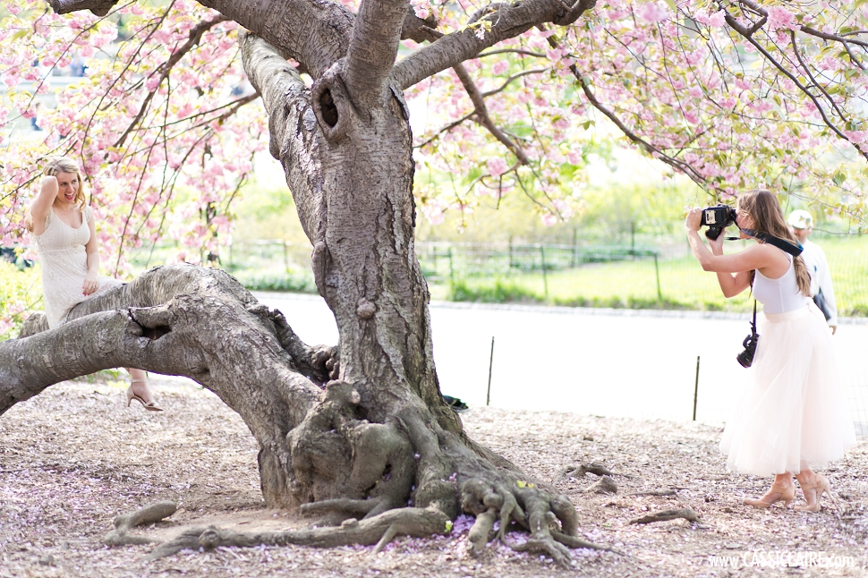 Cherry-Blossoms-Central-Park-NYC_001.jpg