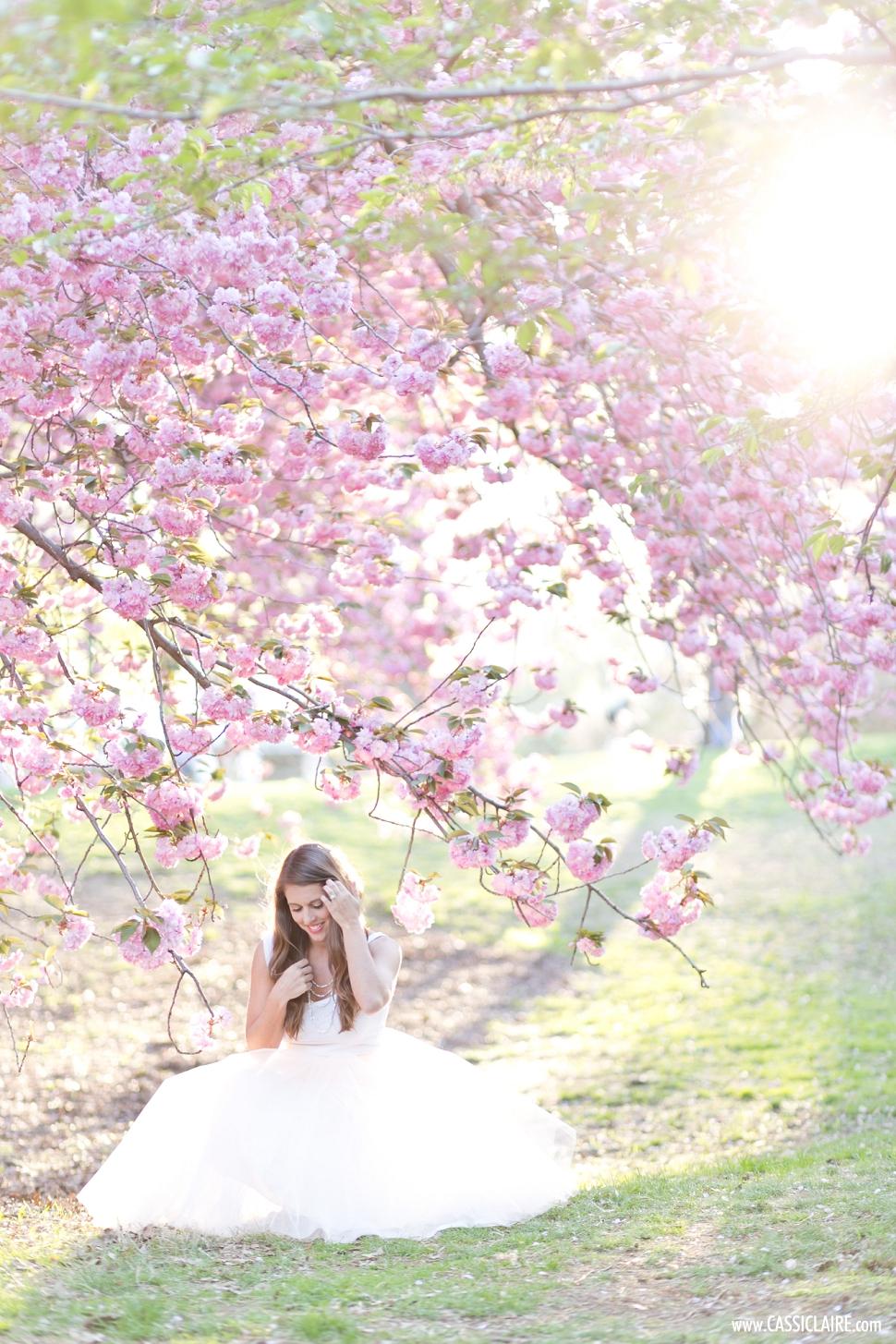 Cherry-Blossoms-Central-Park-NYC_017.jpg