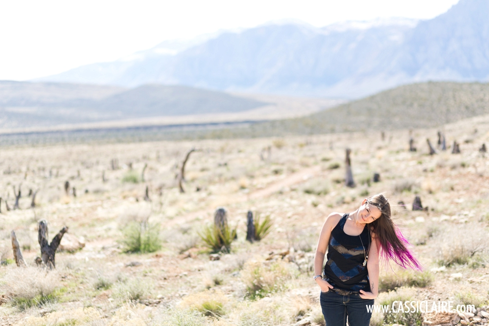 Mojave-Desert-Red-Rock_CassiClaire_05.jpg