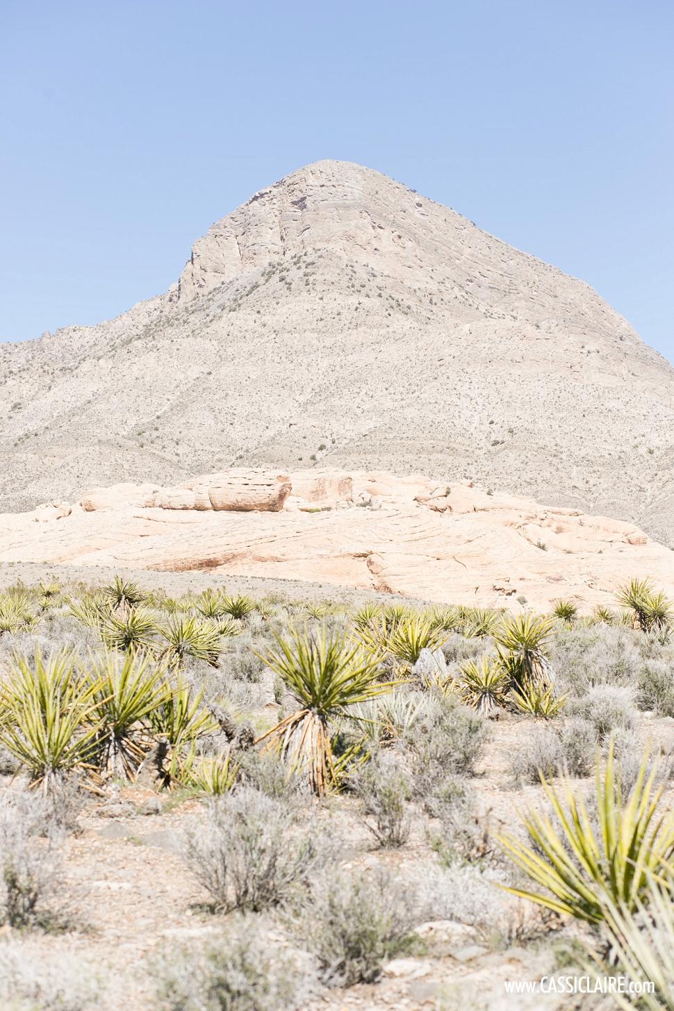 Mojave-Desert-Red-Rock_CassiClaire_06.jpg