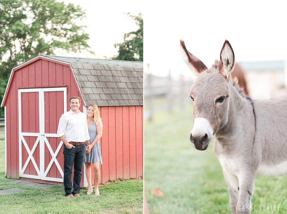 NJ-Farm-Engagement-Photos_06.jpg