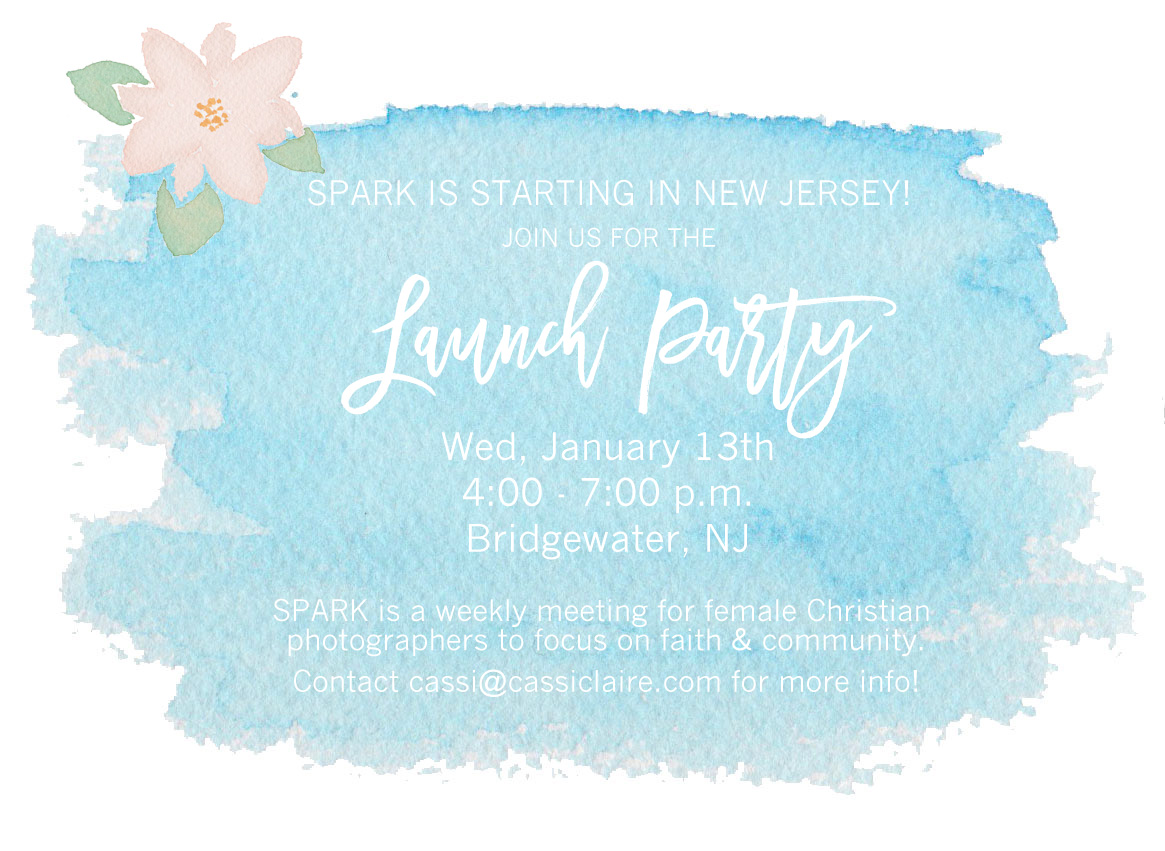 SPARK NJ Launch Party 2