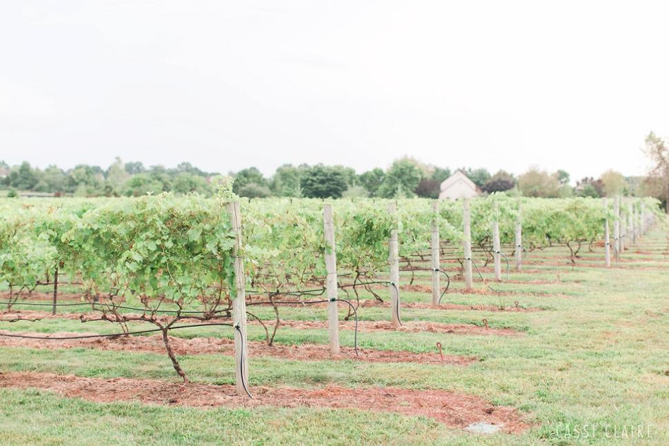 Hopewell-Valley-Vineyards-Wedding_16.jpg