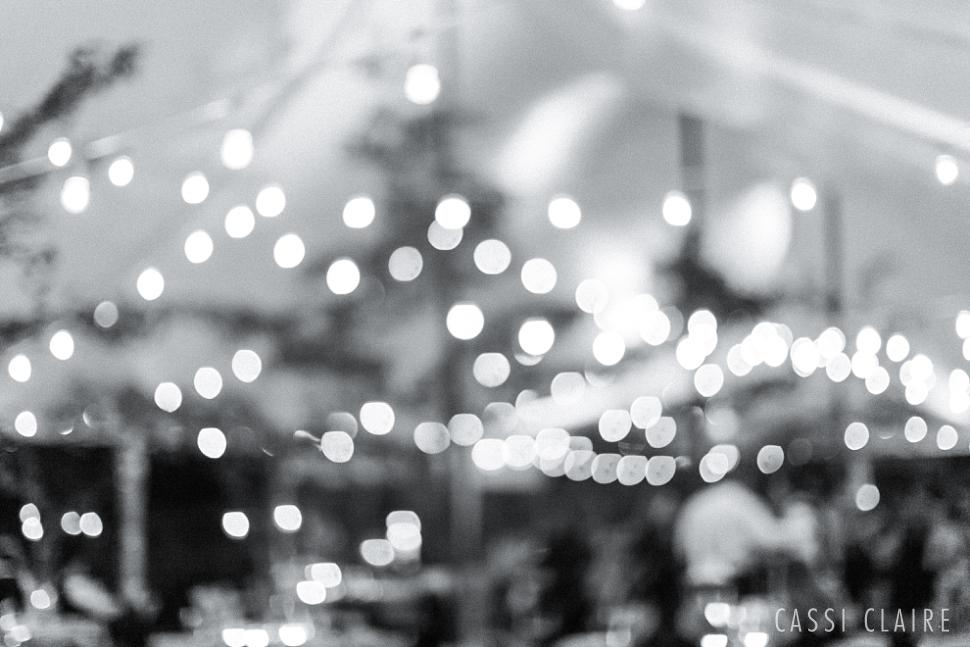 red-maple-vineyard-wedding-photographer_77