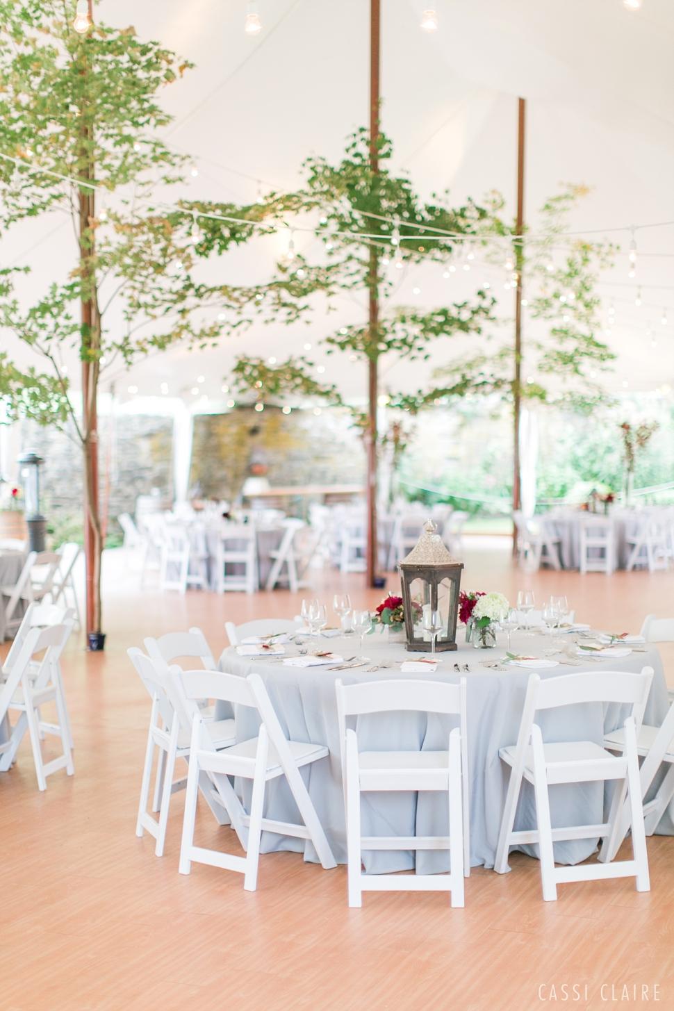 Red-Maple-Vineyard-Wedding-Photographer_62.jpg