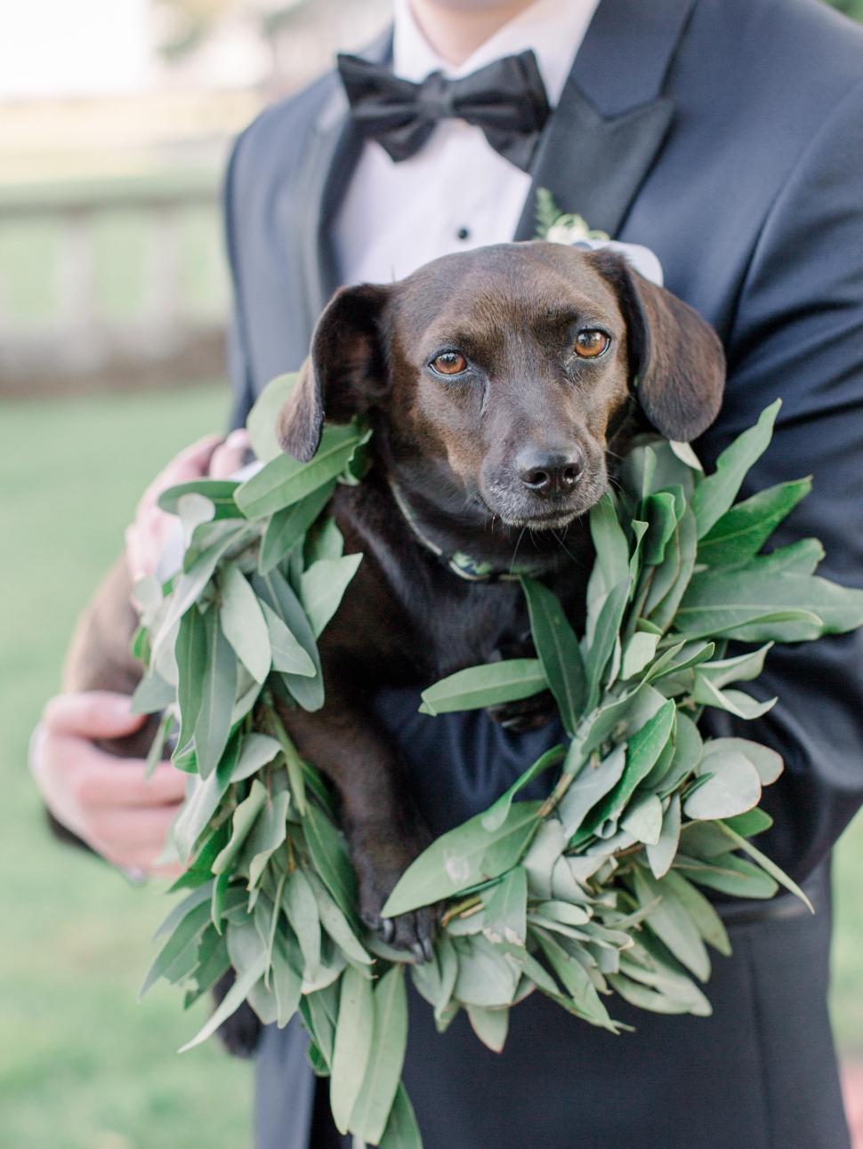 Bourne-Mansion-Wedding-Photos-Cassi-Claire-Long-Island-Wedding-Photographer_23.jpg