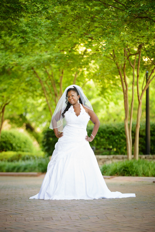 greenville-sc-falls-park-bridal-portrait-1.jpg