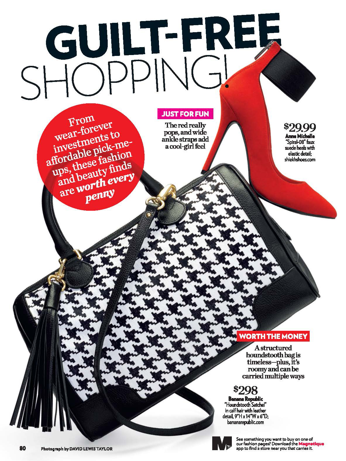 PSW Houndstooth bag + Red shoe .jpg