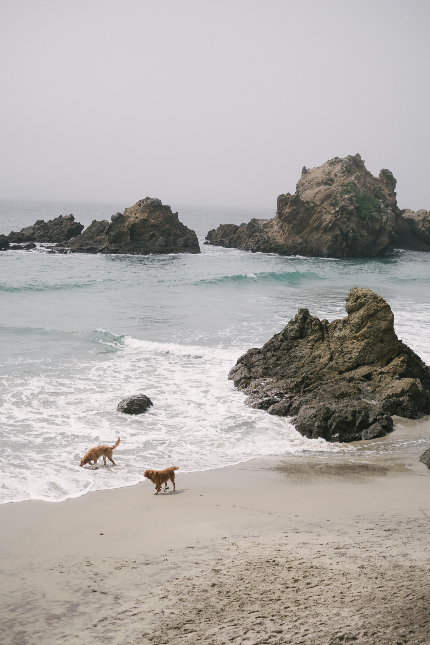 bigsur (14 of 40).jpg