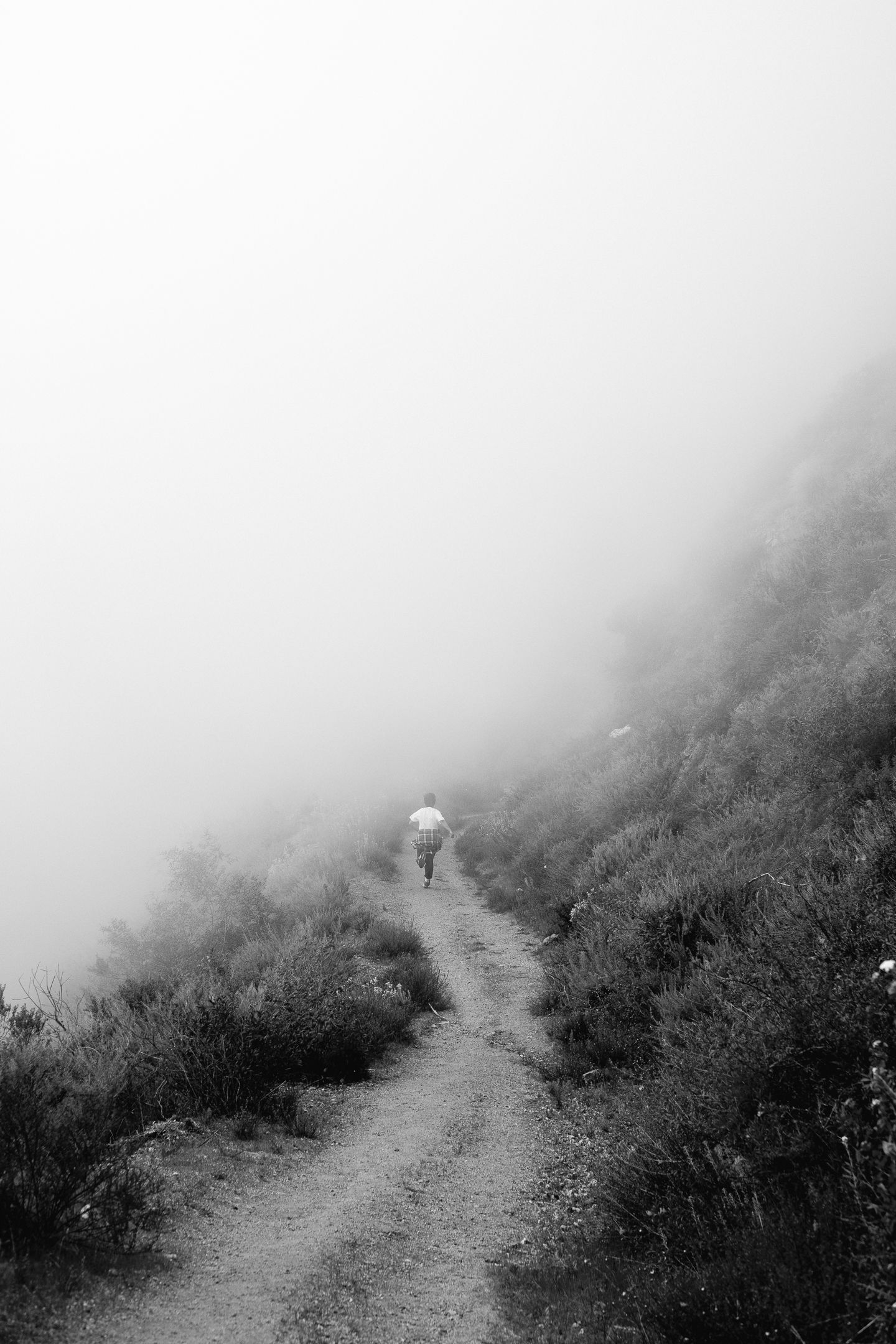 bigsur (39 of 40).jpg