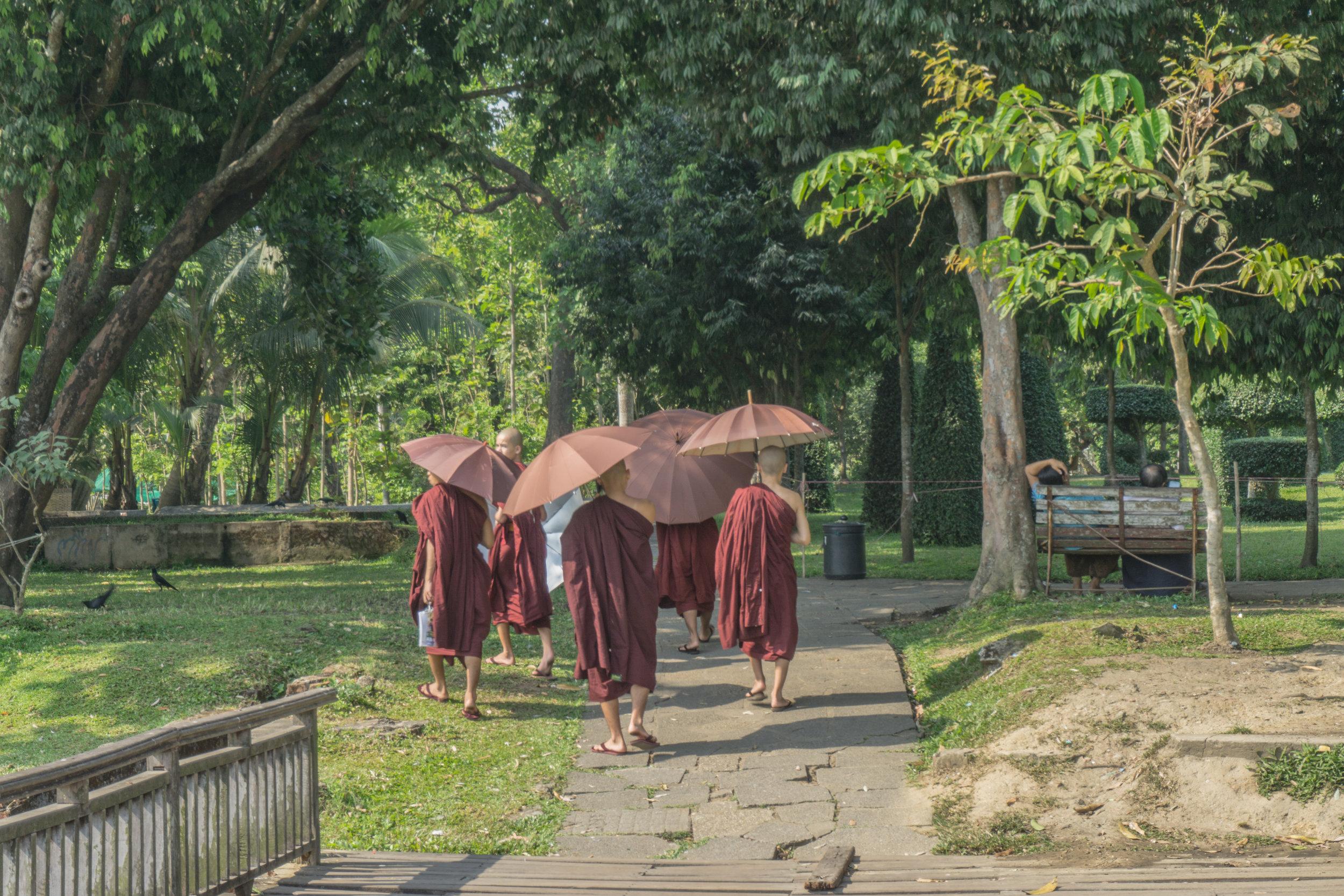 Monks in Kandawgyi Park