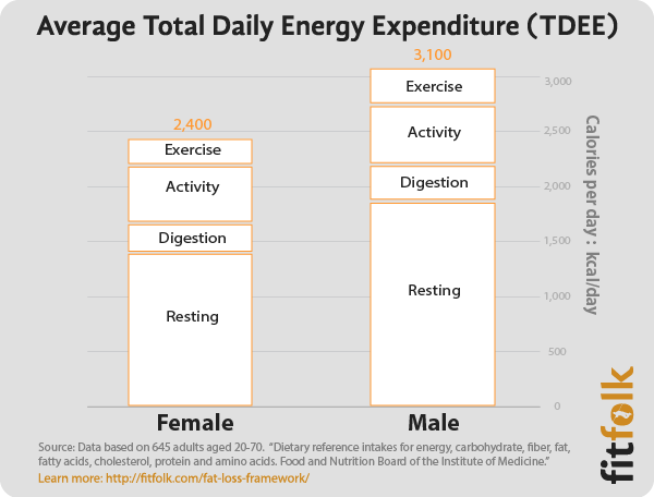 Total Daily Energy Expenditure TDEE.png