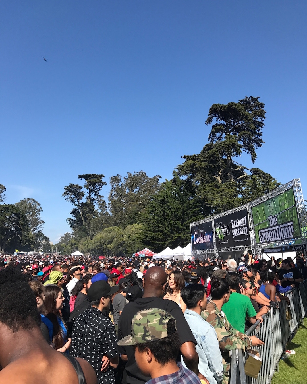 420 Hippie hill SF
