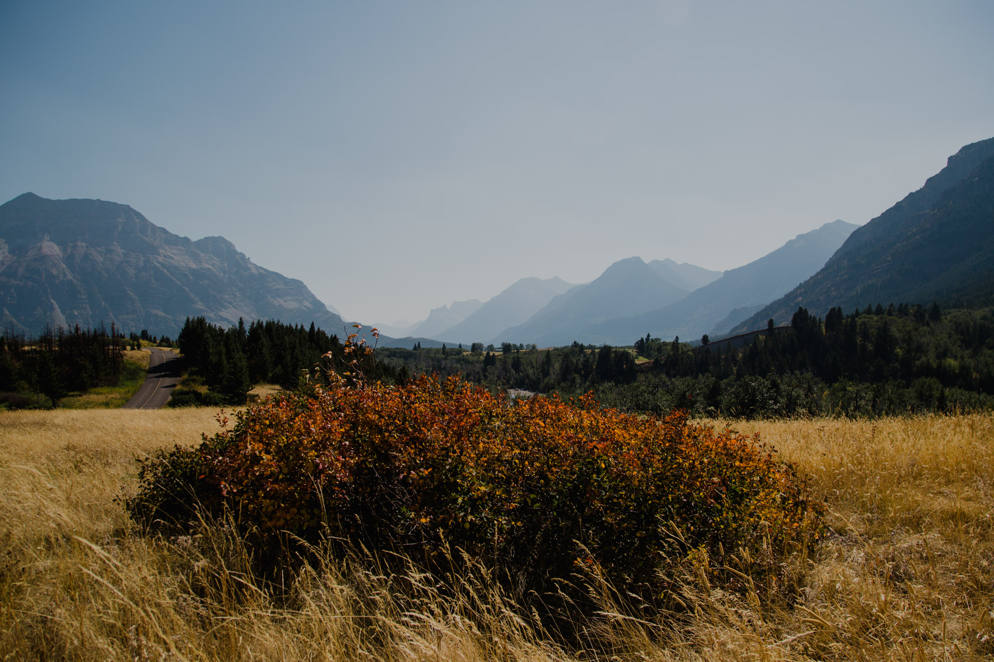Waterton 27.8.19-64.jpg