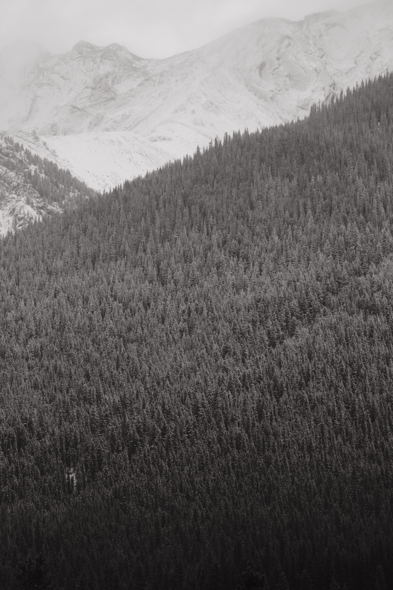 Canada camping-8.jpg