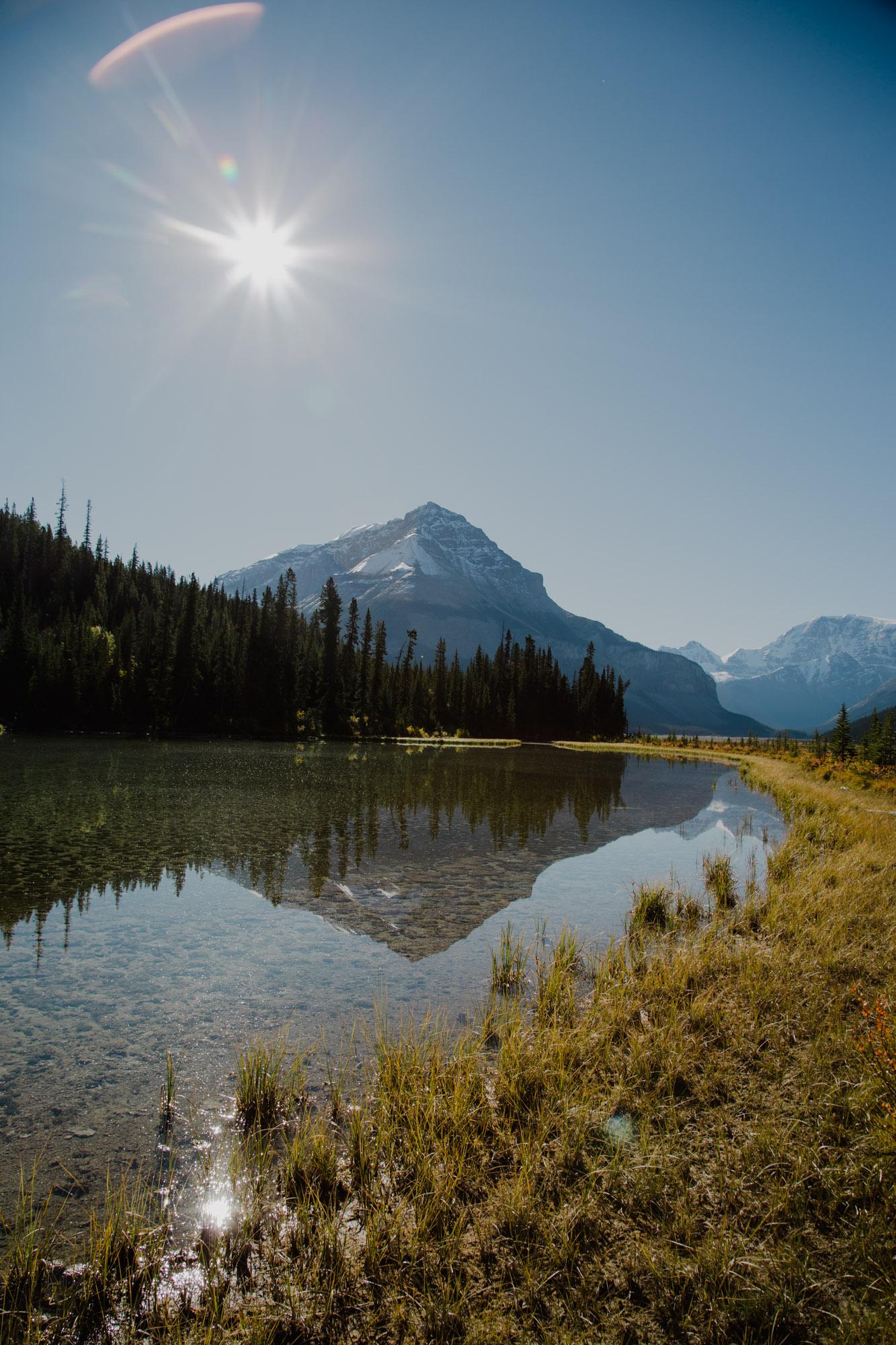 Jasper National Park  -218.jpg