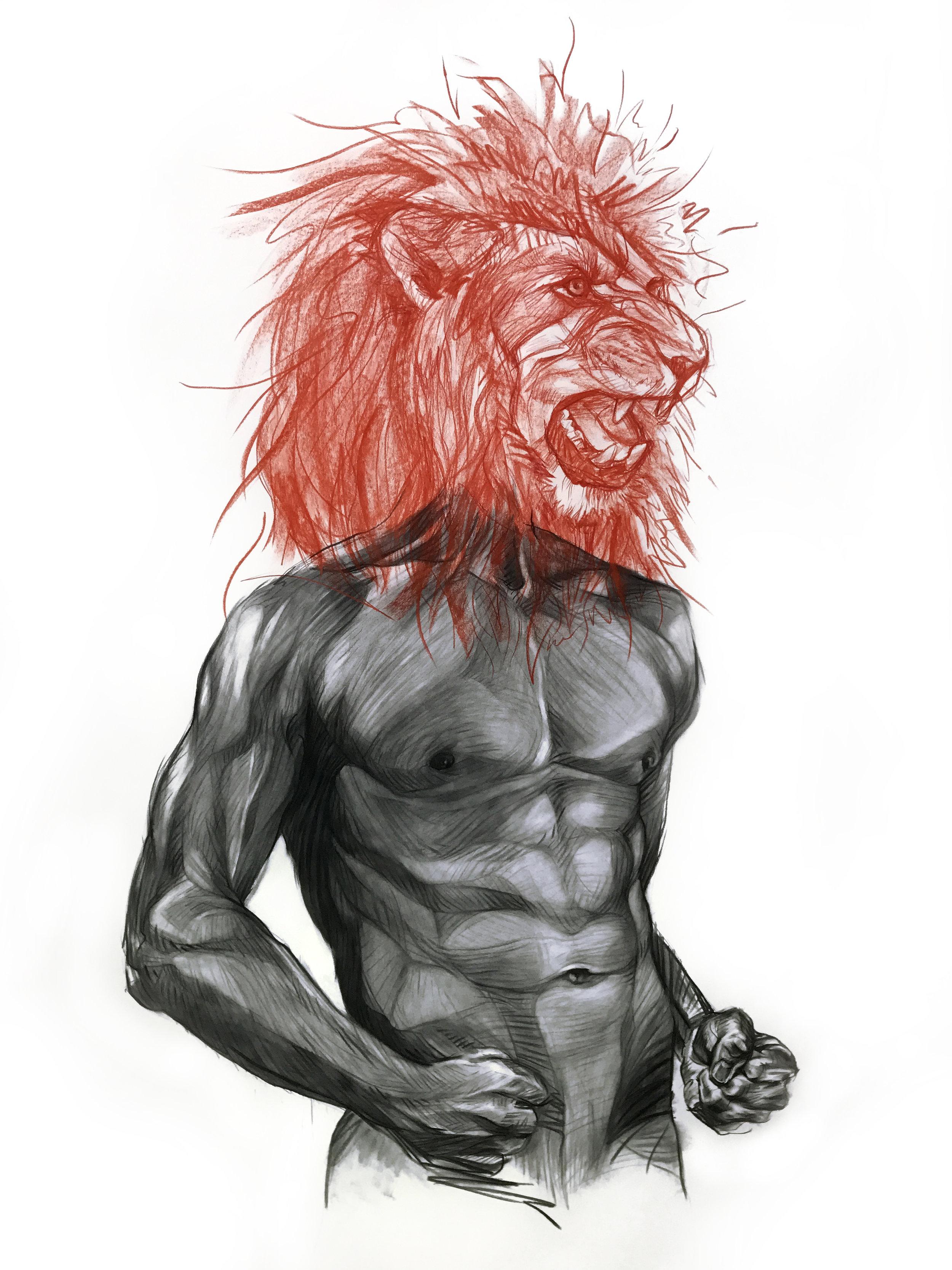 WARRING LIONS I
