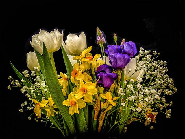 2016 March spring flowers_z.jpg