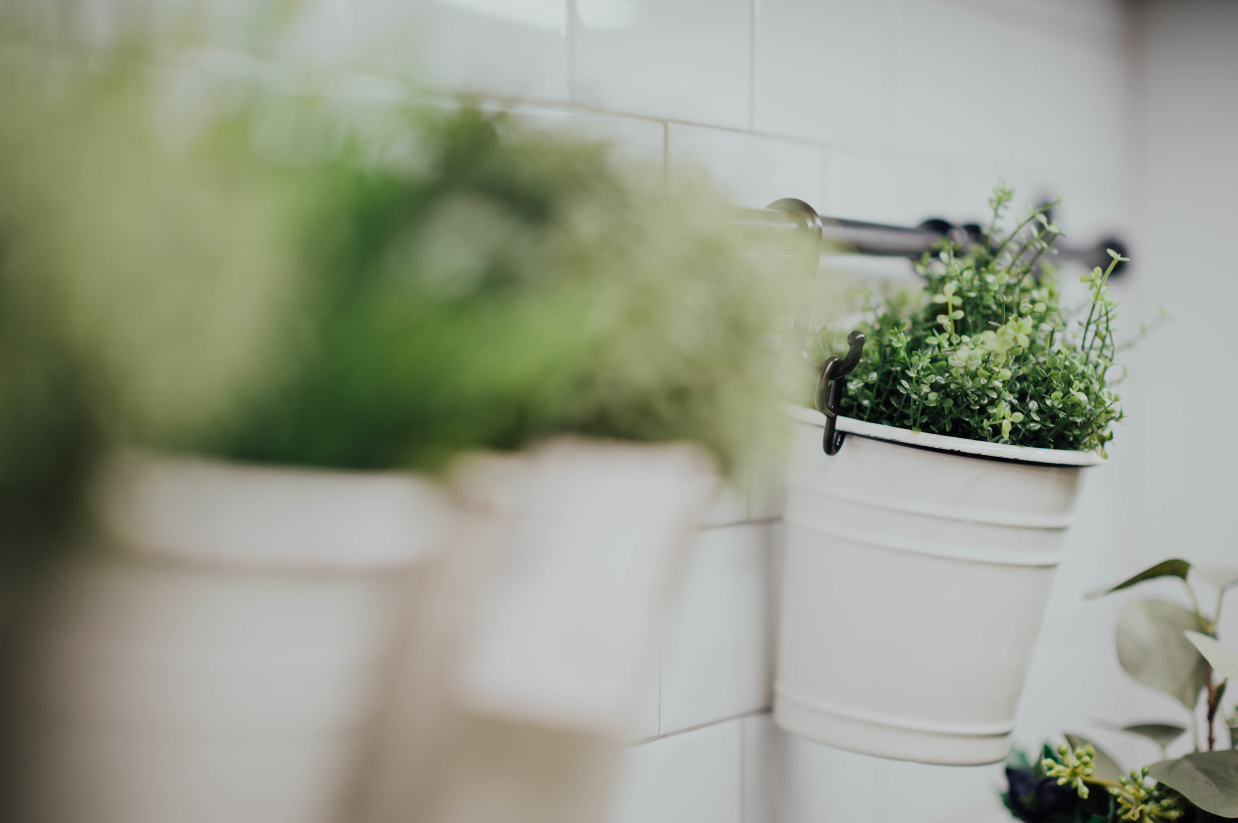 Growing your own herbs makes you eco-friendly, lowers your carbon footprint, saves you money and makes you look like a proper domestic goddess!