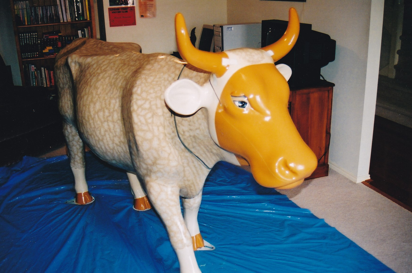 Cow (3).jpg