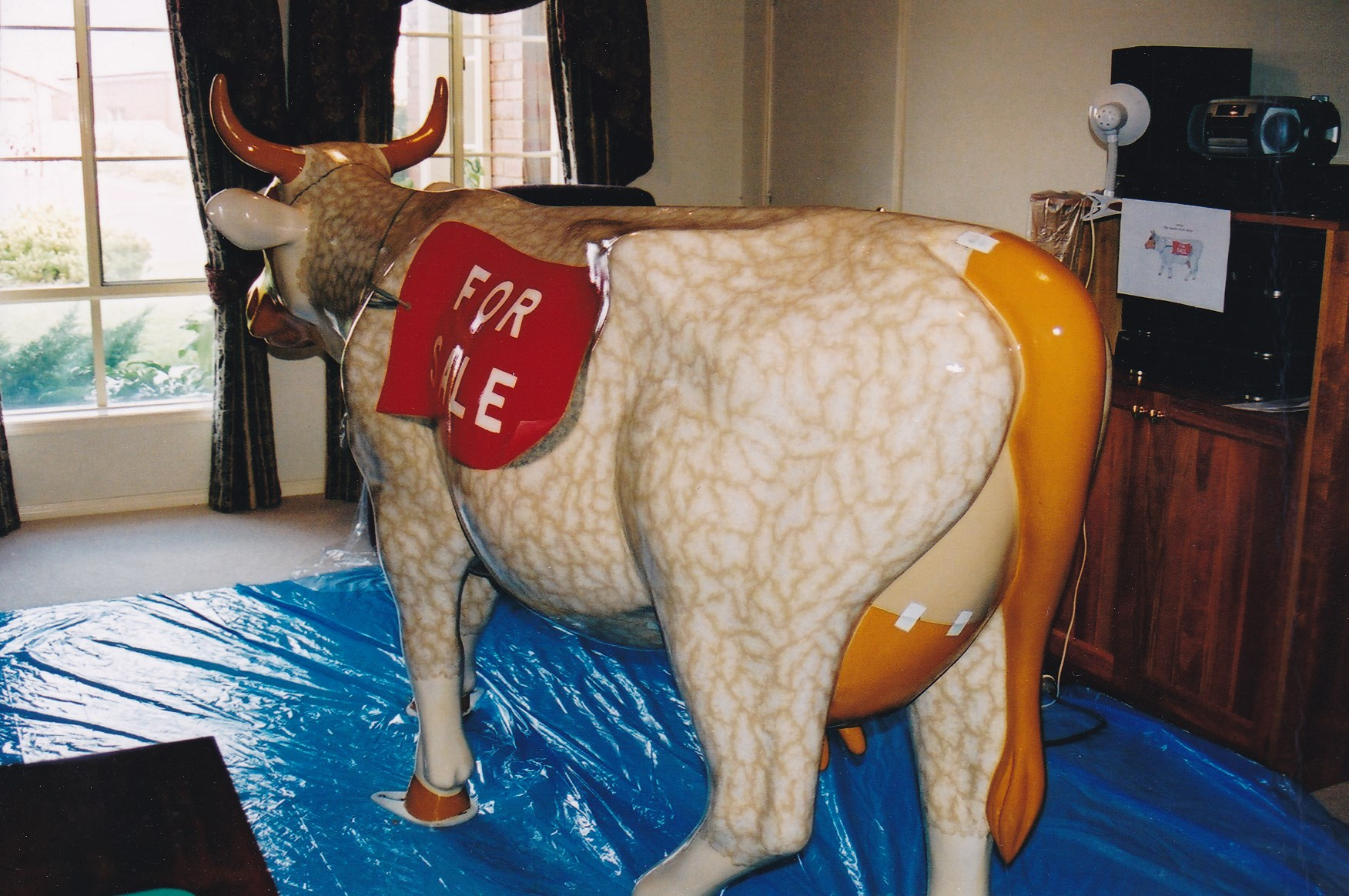 Cow (4).jpg