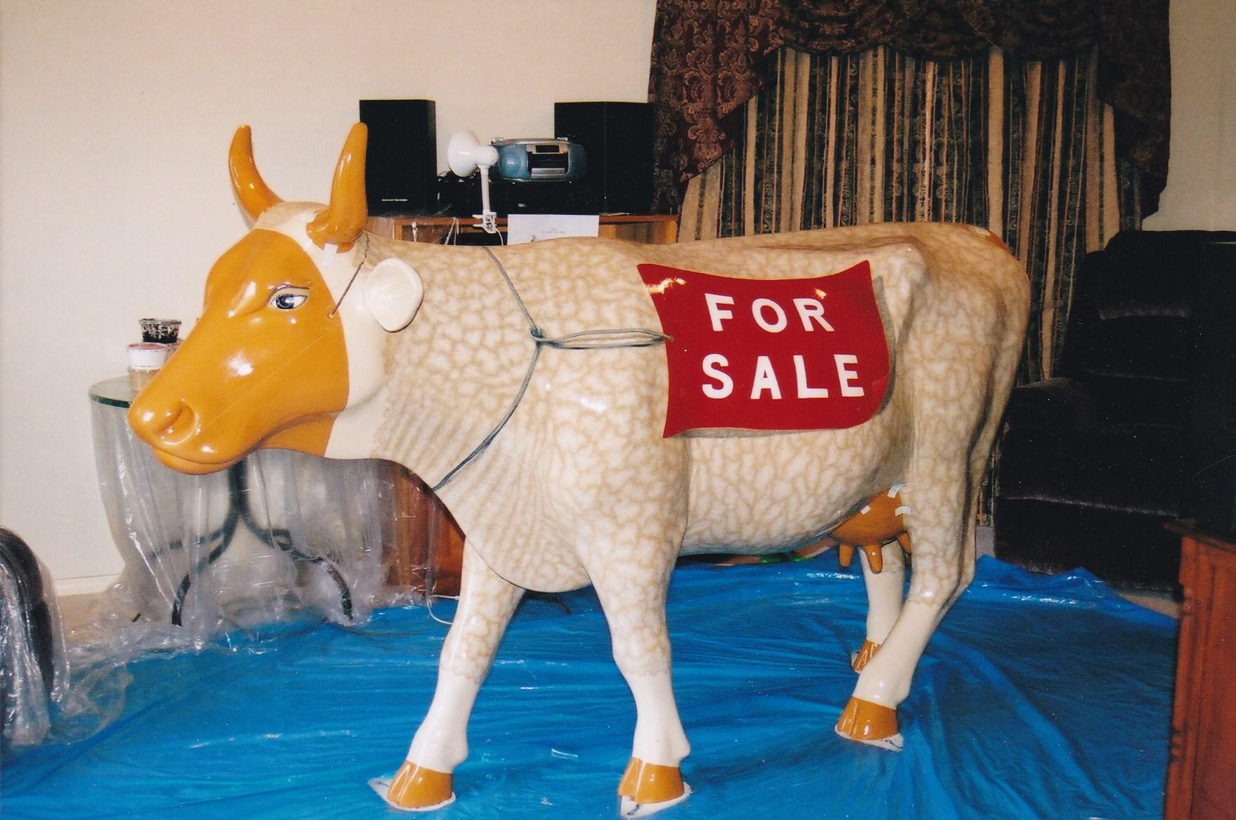 Cow (5).jpg