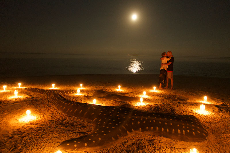 Ken and Karen kiss in the moonlight by the Whale shark sand-sculpture after dinner on the beach.