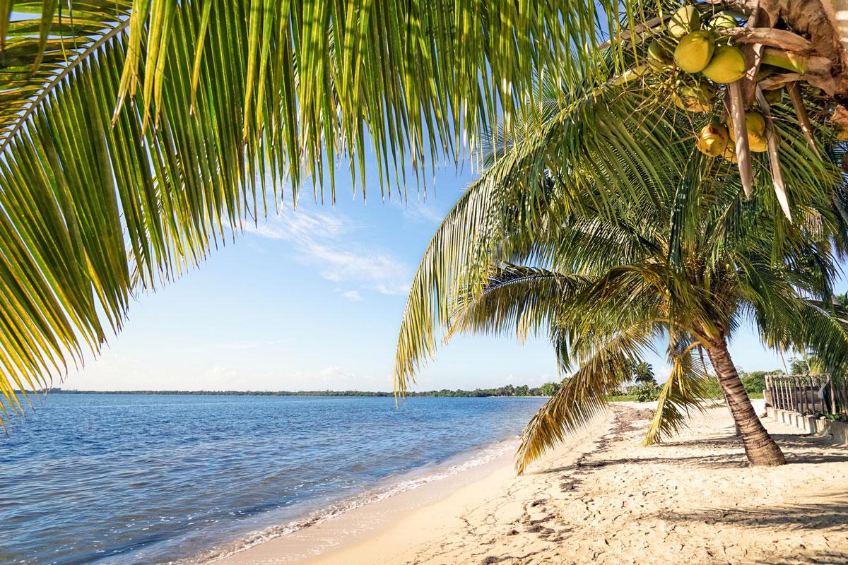 CUB_Tours-Playa-Larga-©-Yalla-Tours-22.jpg