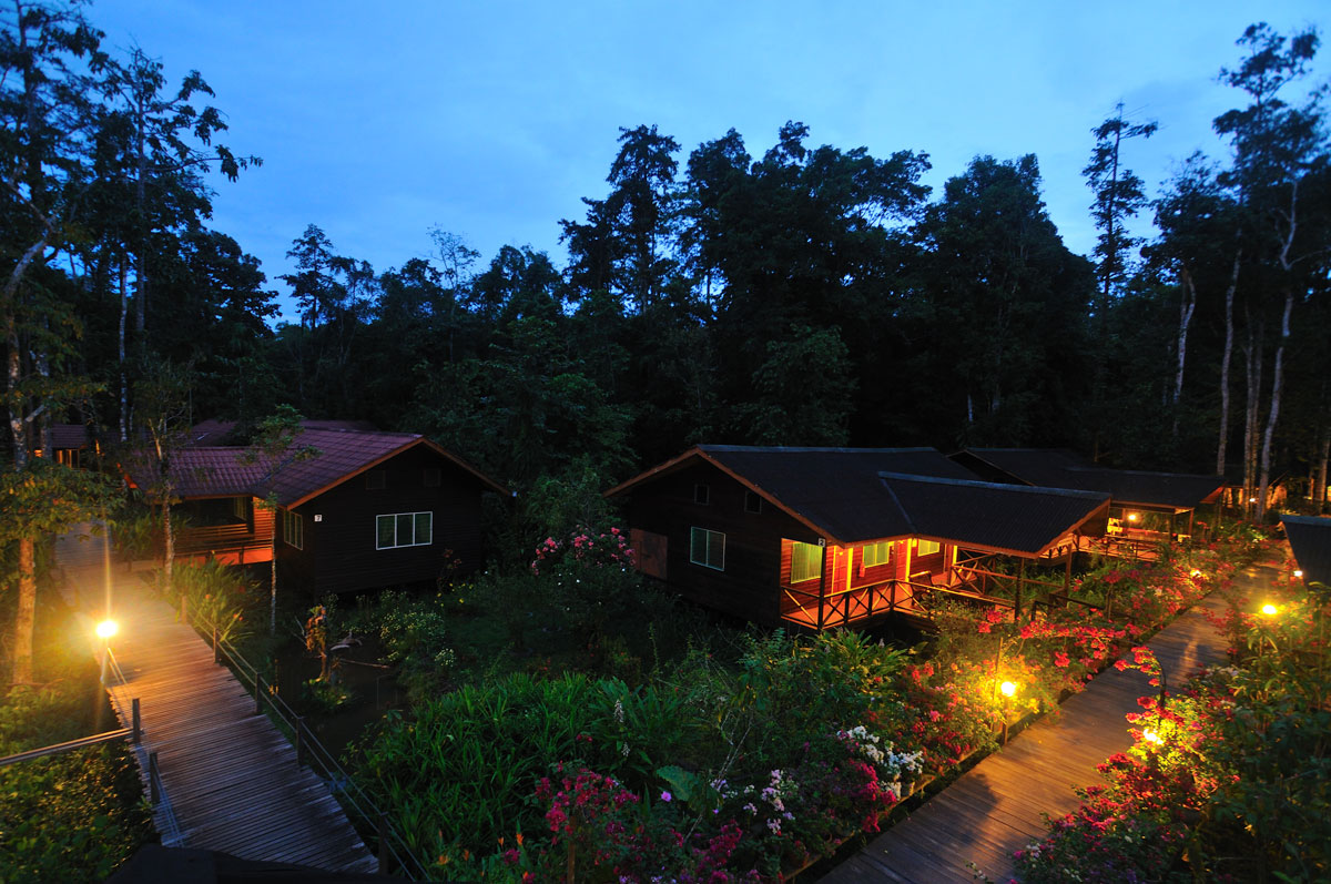 MYS_Lodge-at-night-©-Abai-Jungle-Lodge-001.jpg
