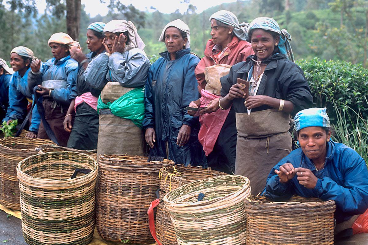 LKA_Tea-pickers-©-Sri-Lanka-Instyle-002.jpg