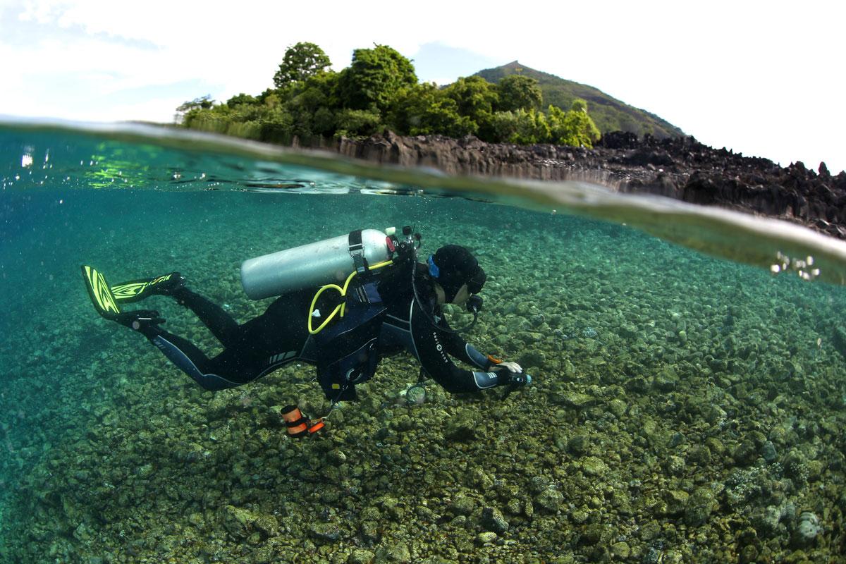 IDN_Banda-Islands-uw-©17-Thomas-Baechtold-241.jpg