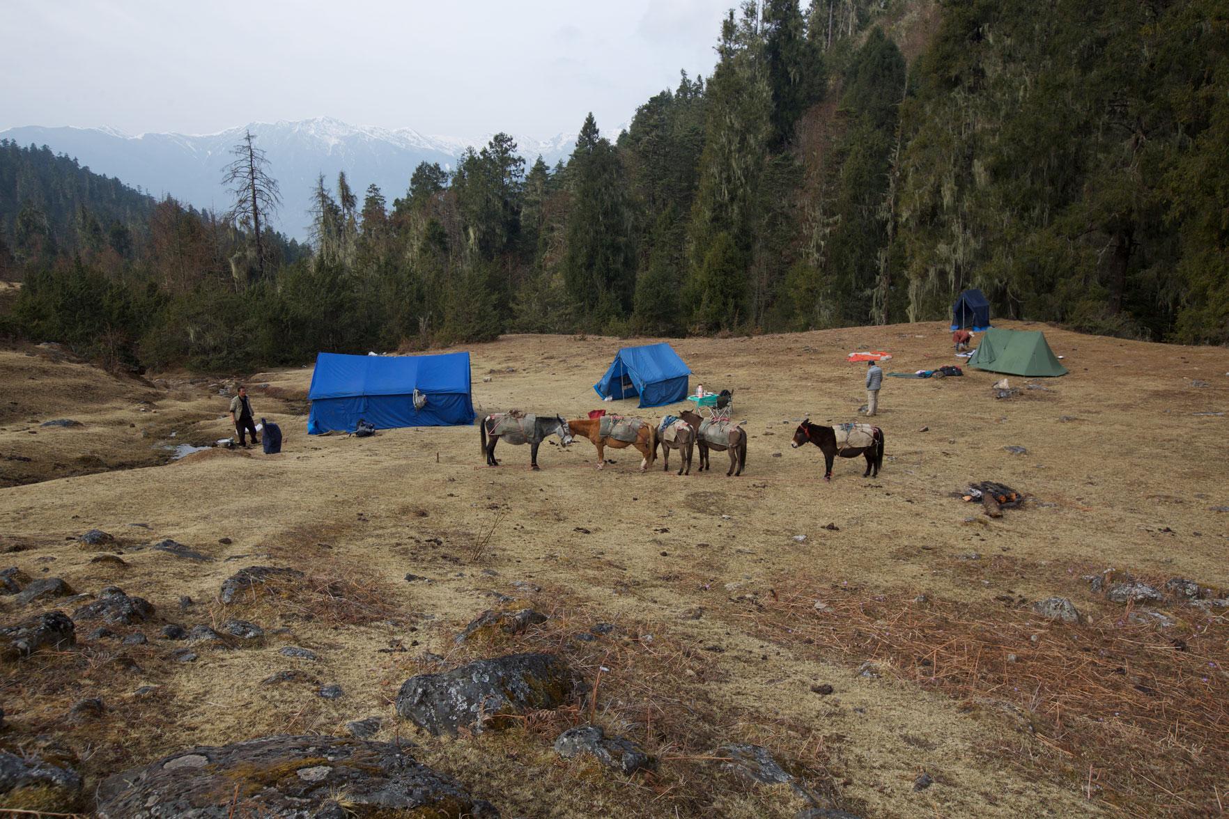BTN_Sagala-Mountain-pass-trek-and-camp-©17-Thomas-Baechtold-405.jpg