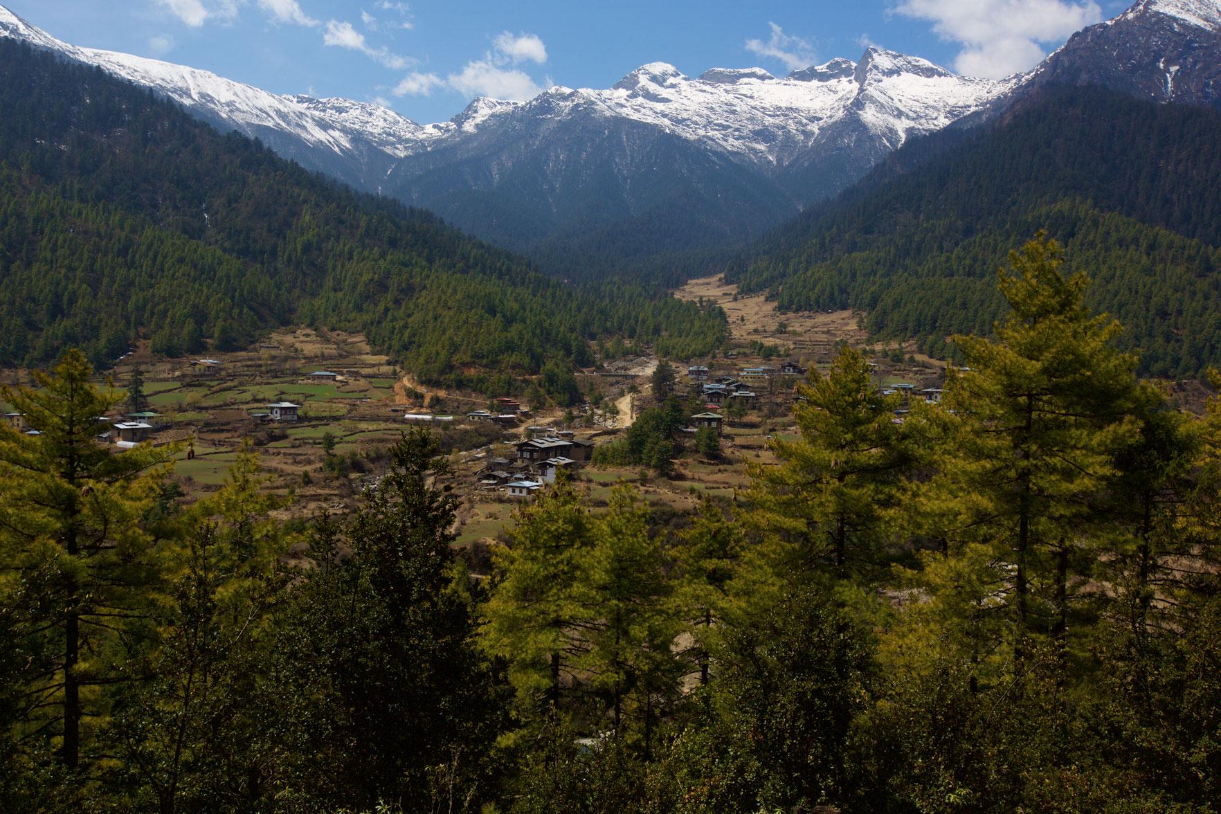 BTN_Sagala-Mountain-pass-trek-and-camp-©17-Thomas-Baechtold-468.jpg