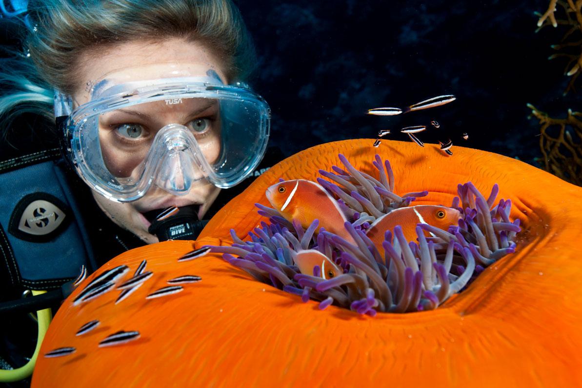 AUS_Diver-Anemone-©-Spirit-of-Freedom.jpg