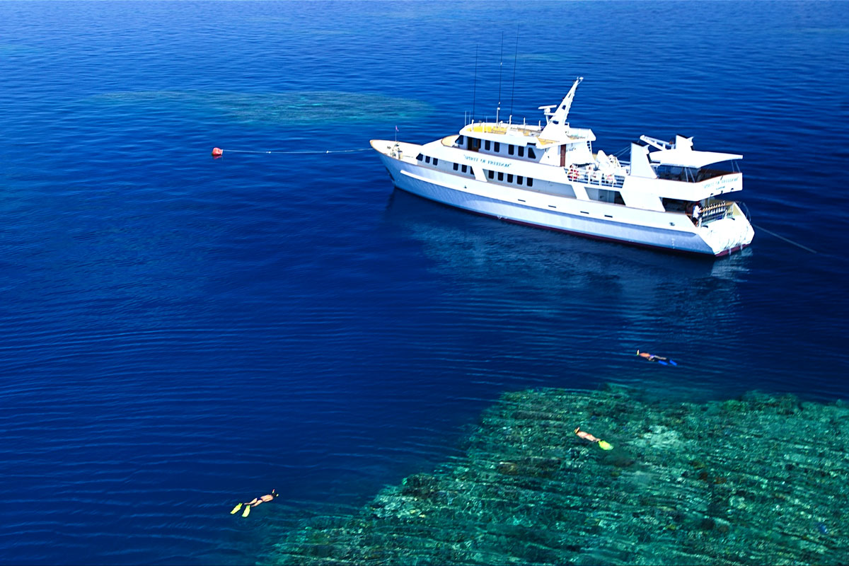 AUS_Vessel-Reef-©-Spirit-of-Freedom-2.jpg