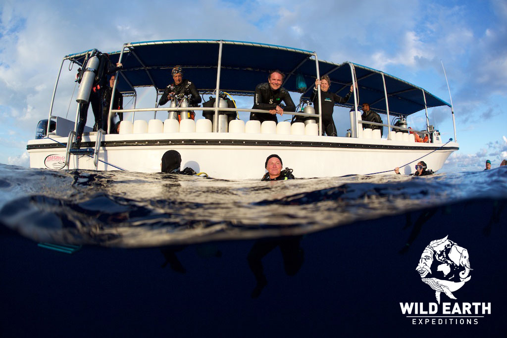 Diving - Palau - Wild Earth Expeditions