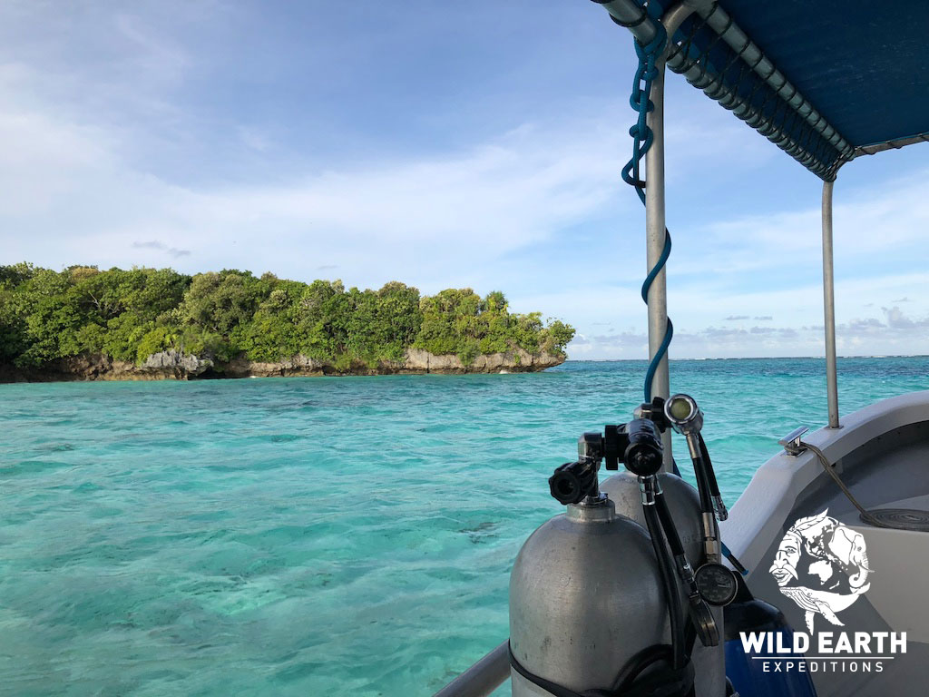 Rock Islands - Palau - Wild Earth Expeditions