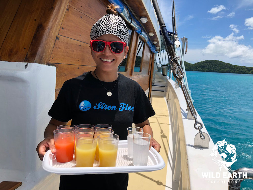 After dive & snorkel drink - Palau - Wild Earth Expeditions