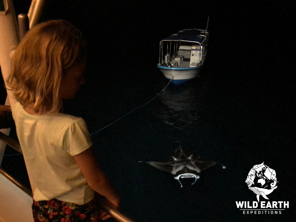 Estelle watches the Mantas by the boat - Palau - Wild Earth Expeditions