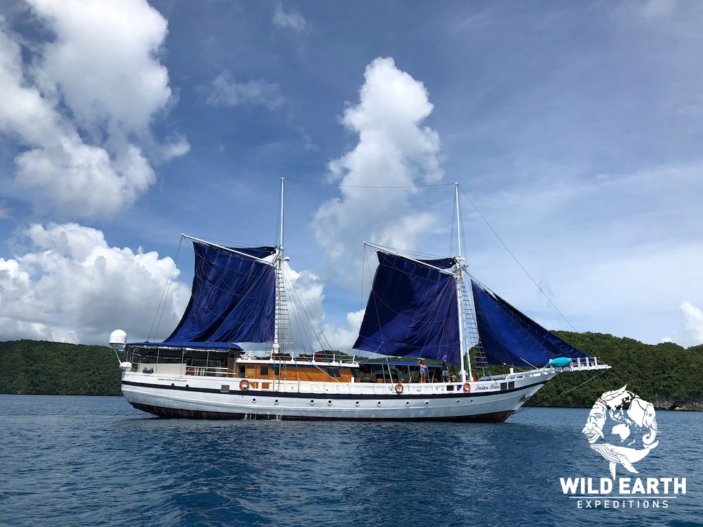 S/Y Palau Siren - Palau - Wild Earth Expeditions